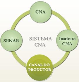 sistema cna