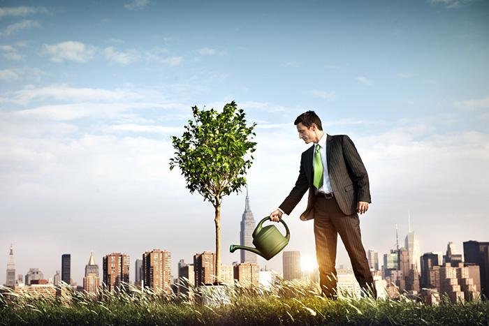 MEI - Dicas para o crescimento da sua empresa