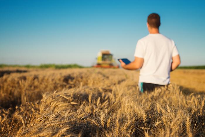 Agritech: o empreendedorismo no agronegócio